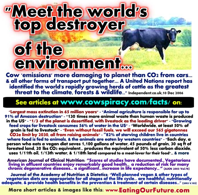 Are Is Livestock Cattle Cows Animal Agriculture Meat Dairy Main Cause Climate Change Greenhouse Gas Pollution DeForestation Desertification Famine Wasting Fuels Water Grains Food Arable Land Farms & is Vegan Vegetarian Diet the Healthy Sustainable Solution Facts Statistics
